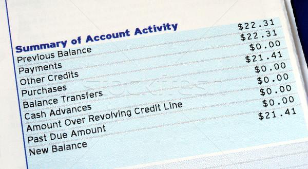 Sintesi conto attività carta di credito bill soldi Foto d'archivio © johnkwan