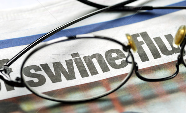 Focus on swine flu Stock photo © johnkwan