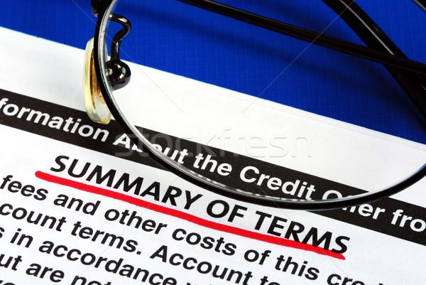 Sintesi carta di credito offrire informazioni carta cliente Foto d'archivio © johnkwan