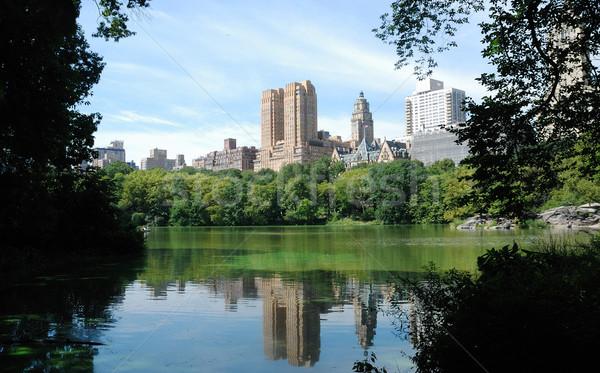 Central Park New York City gebouw natuur tuin Stockfoto © johnkwan