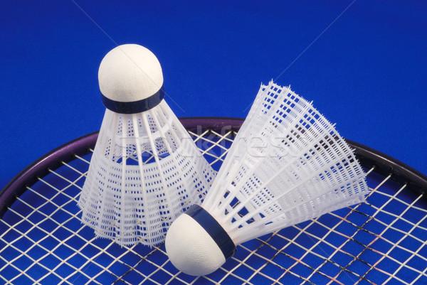 Badminton kavramlar spor spor uygunluk Stok fotoğraf © johnkwan