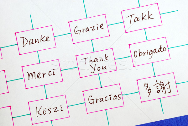 The words Thank You in different languages concepts of appreciation and thankfulness Stock photo © johnkwan