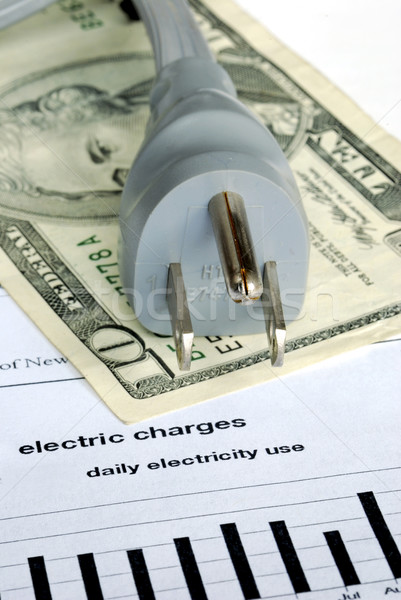 The monthly electric bill is very expensive  Stock photo © johnkwan
