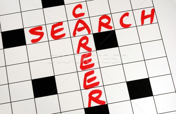 ír szavak karrier keresés keresztrejtvény puzzle Stock fotó © johnkwan