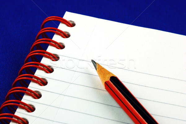 Stock photo: Taking notes isolated on blue concepts of education and knowledge