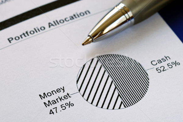 Portfolio allocation illustrates the asset in a pie chart Stock photo © johnkwan