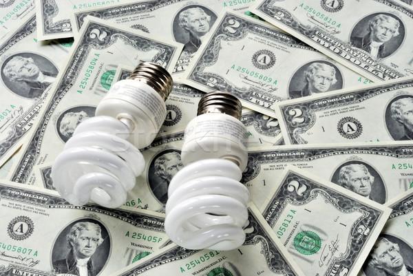 Megtakarítás energia megtakarított pénz villanykörték pénz erő Stock fotó © johnkwan