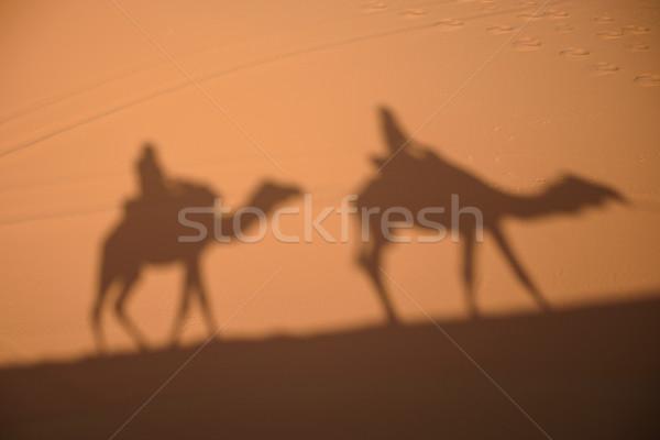 Camelo sombras deserto areia Marrocos Foto stock © johnnychaos