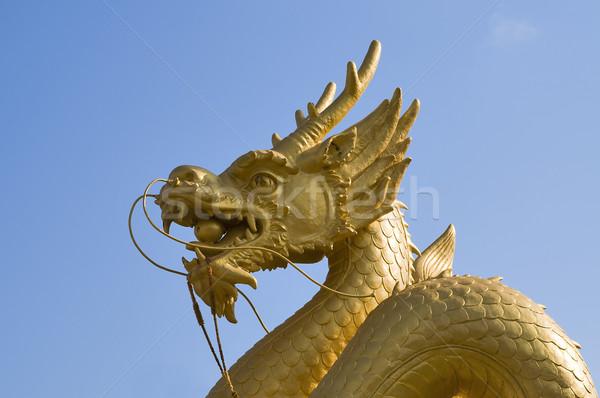 Altın ejderha mavi gökyüzü phuket Tayland mavi Stok fotoğraf © johnnychaos