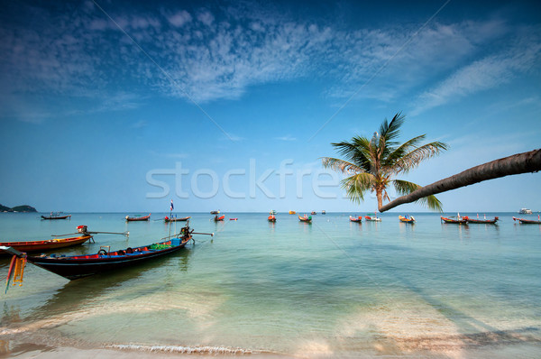 palm and boats on tropical beach, Thailand Stock photo © johnnychaos