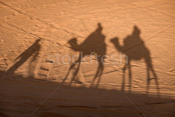 Camel shadows on Sahara Desert sand in Morocco. Stock photo © johnnychaos