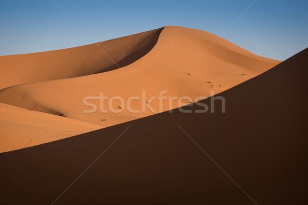 Marokkó Szahara sivatag homok égbolt nap Stock fotó © johnnychaos