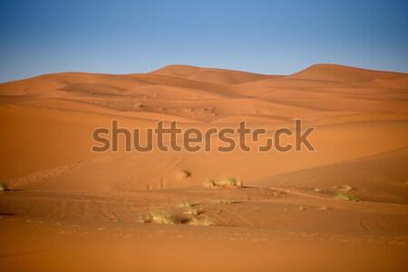 Marruecos sáhara desierto arena cielo sol Foto stock © johnnychaos