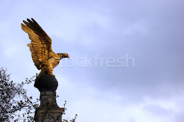 Gold eagle statue Stock photo © johnnychaos