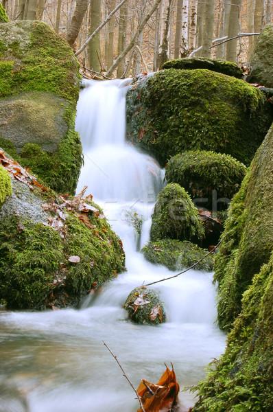 Mountain waterfall Stock photo © johnnychaos