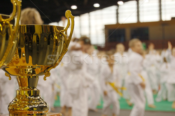 karate tournament Stock photo © johnnychaos