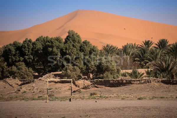 オアシス 村 庭園 フットボールの競技場 サハラ砂漠 砂漠 ストックフォト © johnnychaos