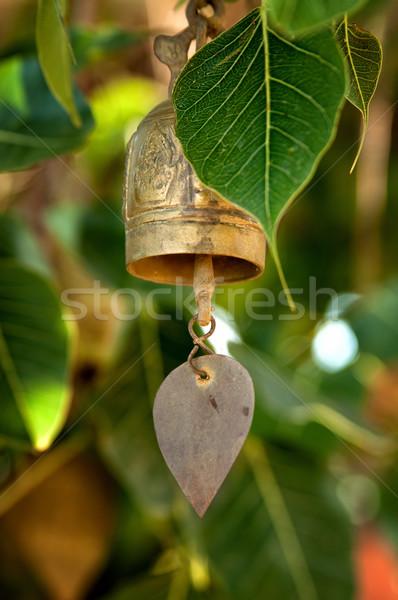 Budista sino Tailândia tradição árvore metal Foto stock © johnnychaos