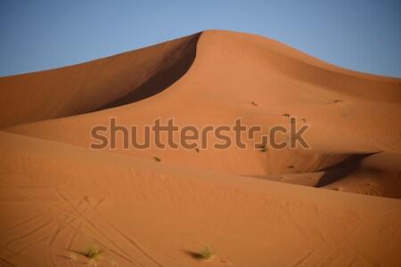 Marruecos sáhara desierto moto superior duna Foto stock © johnnychaos