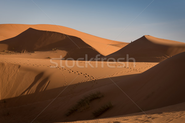 Марокко Сахара пустыне песок небе солнце Сток-фото © johnnychaos