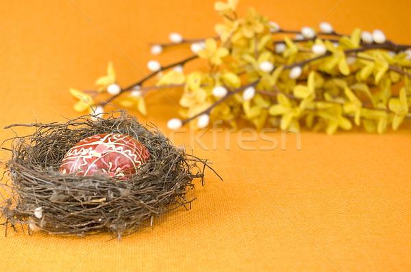 Fészek húsvéti tojás narancs étel természet tojás Stock fotó © johnnychaos