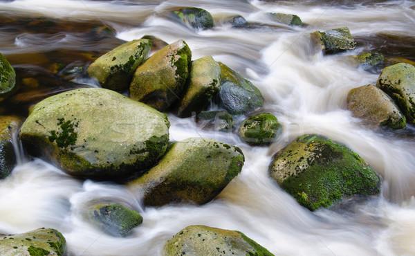 Dağ nehir çağlayan taşlar sonbahar bitki örtüsü Stok fotoğraf © Johny87