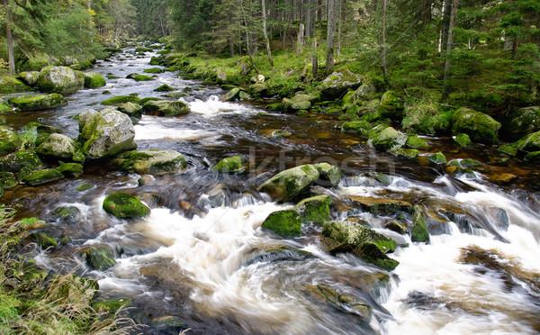 Montanha rio cachoeira pedras outono vegetação Foto stock © Johny87