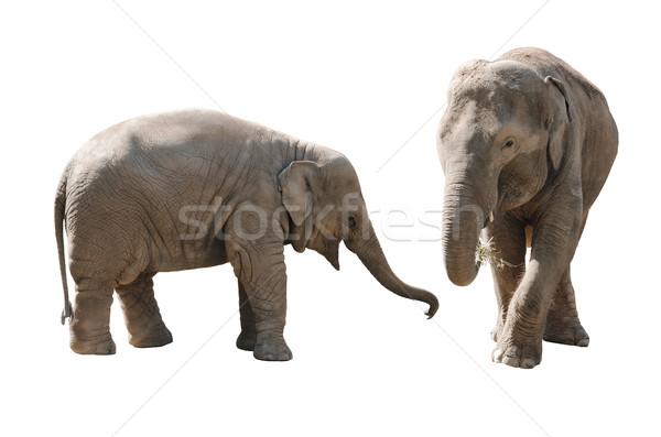 Filler Asya anne kız yalıtılmış beyaz Stok fotoğraf © Johny87