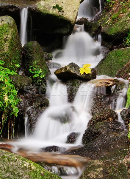 Calme cascade belle paisible pierres automne Photo stock © Johny87
