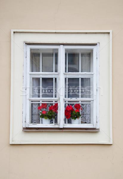Velho fachada casa velha Praga flor edifício Foto stock © Johny87