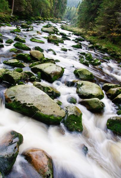 Stok fotoğraf: Dağ · nehir · çağlayan · taşlar · sonbahar · bitki · örtüsü