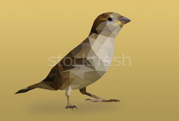 Polygon bird Stock photo © Johny87