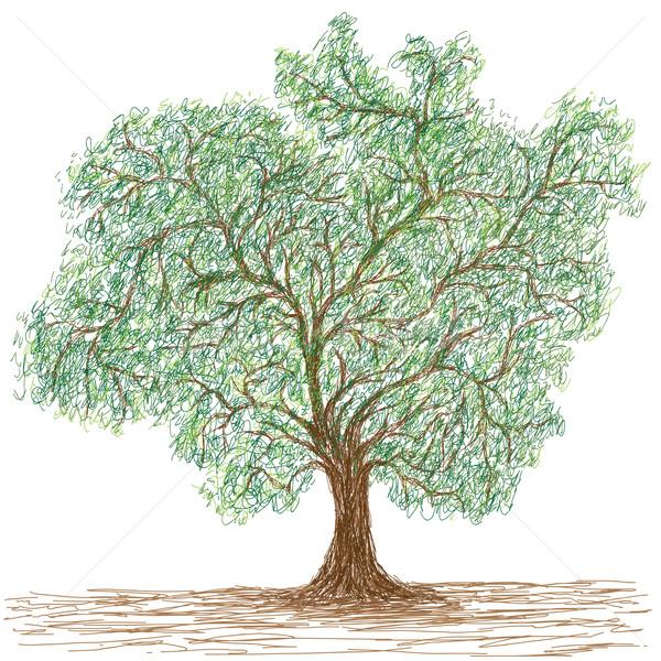Foto stock: árbol · ilustración · enorme · aislado · primavera · paisaje