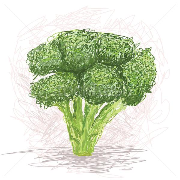 Brokoli örnek taze sebze doğa Stok fotoğraf © jomaplaon