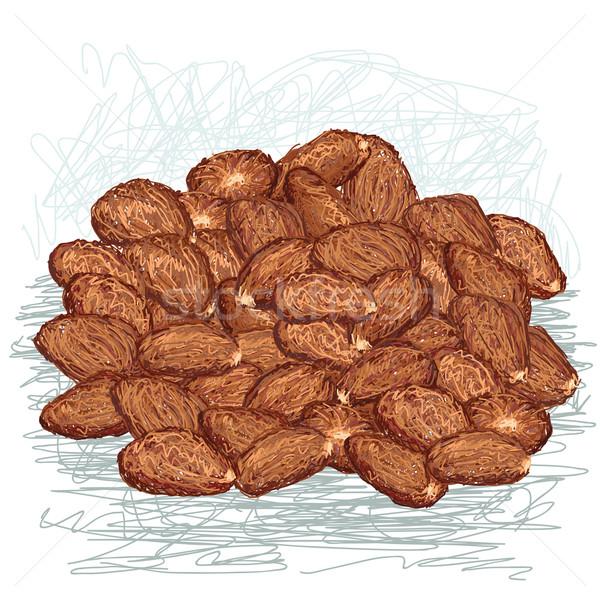 Cacau feijões ilustração chocolate Foto stock © jomaplaon