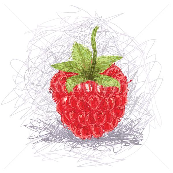 Frambuesa primer plano ilustración frescos frutas rojo Foto stock © jomaplaon