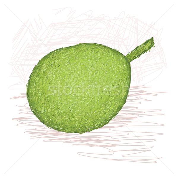 breadfruit smooth-skinned variety Stock photo © jomaplaon