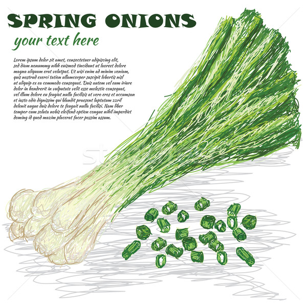 spring onions Stock photo © jomaplaon