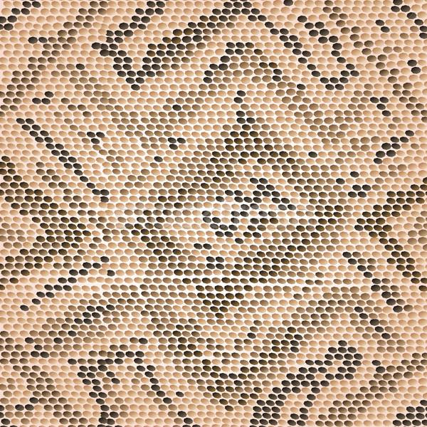 Yılan cilt örnek soyut dizayn Stok fotoğraf © jomaplaon