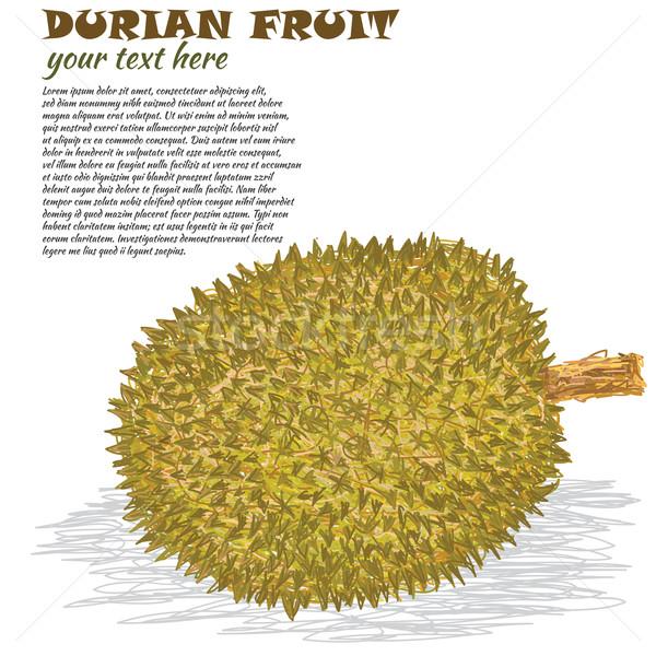 Primer plano ilustración maduro exótico naturaleza frutas Foto stock © jomaplaon