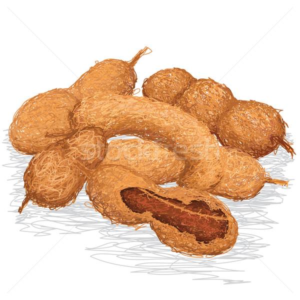 Primer plano ilustración grupo maduro alimentos frutas Foto stock © jomaplaon