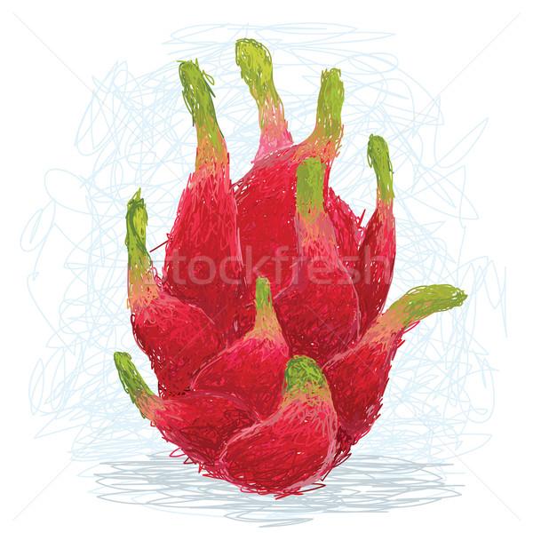 Ejderha meyve örnek taze egzotik Stok fotoğraf © jomaplaon