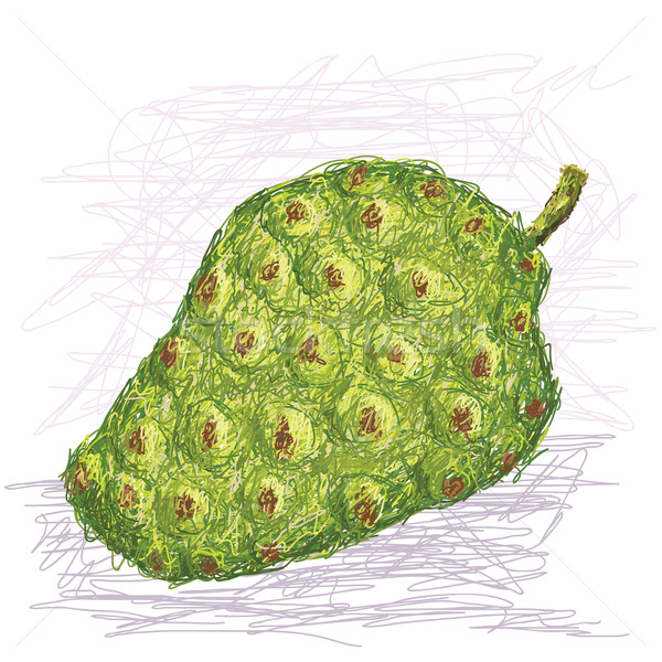 Frutas ilustración frescos aislado blanco alimentos Foto stock © jomaplaon