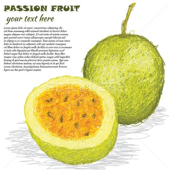 Passion fruits illustration fraîches isolé Photo stock © jomaplaon