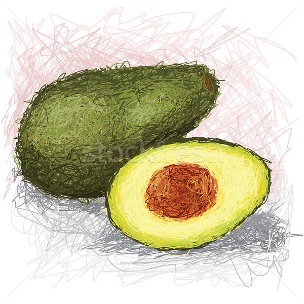 Avokado örnek taze meyve yeşil Stok fotoğraf © jomaplaon