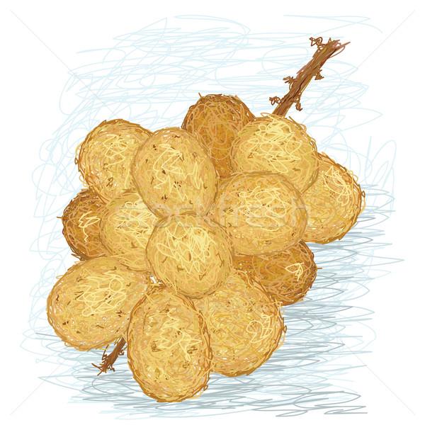 örnek taze meyve tropikal karikatür Stok fotoğraf © jomaplaon