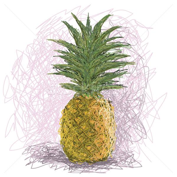 Ananas örnek taze meyve gıda Stok fotoğraf © jomaplaon