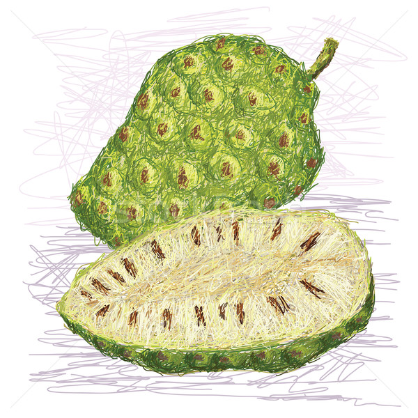 noni fruit cross-section Stock photo © jomaplaon