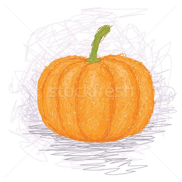 Calabaza primer plano ilustración maduro vegetales alimentos Foto stock © jomaplaon