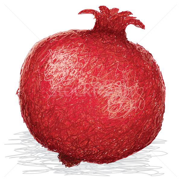 Granada primer plano ilustración maduro frutas aislado Foto stock © jomaplaon